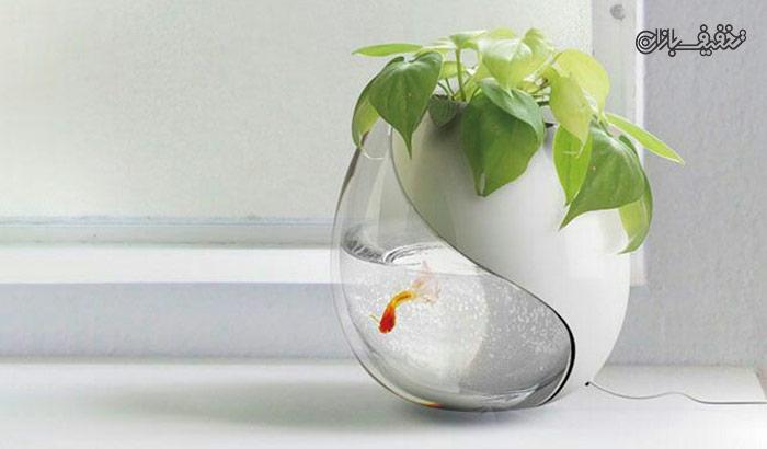 گلدان آکواریوم دیواری با ۳۶% تخفیف |